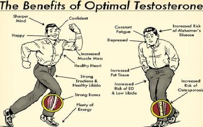 Jak podnieść poziom testosteronu cz.1